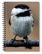 Carolina Chickadee Spiral Notebook