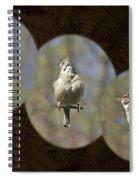 Carolina Wren - Thryothorus Ludovicianus Spiral Notebook