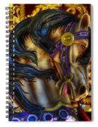 Carousel Beauty Waiting For A Rider Spiral Notebook