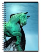 Carousel Vi Spiral Notebook