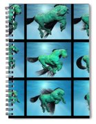 Carousel Xiii Spiral Notebook