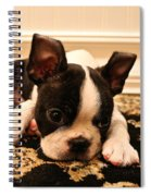 Carpet Cleaner Spiral Notebook