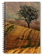 Carpet Fields Of Moravia Spiral Notebook