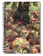 Carpet Of Apples Spiral Notebook