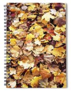 Carpet Of Leafs Spiral Notebook