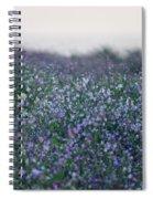 Carpinteria California Wildflowers Spiral Notebook