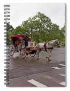 Carriage Ride In Central Park Spiral Notebook
