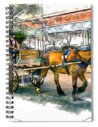 Carriage Ride Spiral Notebook