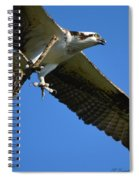 Carrying A Nest For A Living Spiral Notebook