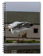Cartoon - A Bird Perched On A Metal Post Getting Ready To Take Off Spiral Notebook