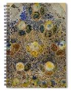 Casa Batllo Tiles Spiral Notebook