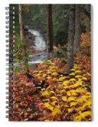 Cascade Creek  Autumn Spiral Notebook