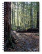 Cascades Forest Path Spiral Notebook