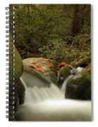 Cascades In Appalachian Mountains Spiral Notebook