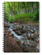 Cascades Of The Forest Spiral Notebook
