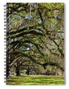 Cascading Oaks Spiral Notebook