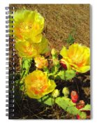 Cascading Prickly Pear Blossoms Spiral Notebook