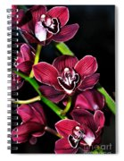 Cascading Red Orchids Spiral Notebook