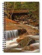 Cascades Below Flume Gorge Spiral Notebook