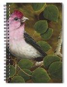 Cassins Finch Spiral Notebook
