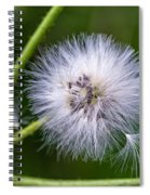 Cast Your Fate To The Wind Spiral Notebook