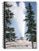 Castle Geyser Yellowstone Np Spiral Notebook