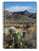 Castle Rock Mountain Spiral Notebook