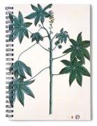 Castor Oil Plant Spiral Notebook