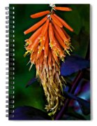 Casual Attire 2 Spiral Notebook