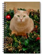 Cat And Christmas Wreath Spiral Notebook