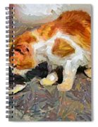 Cat  And Fish Spiral Notebook