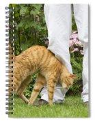 Cat Brushing Against Legs Spiral Notebook