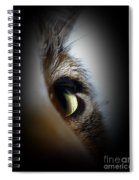 Cat Eye Spiral Notebook