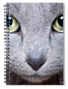 Cat Eyes Spiral Notebook