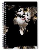 Cat Eyes World Map 2 Spiral Notebook