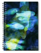 Cat Fishing At Night Spiral Notebook