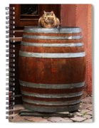 Cat Guarding A Wine Barrel In Alsace Spiral Notebook