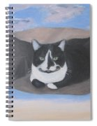 Cat In A Bag Spiral Notebook