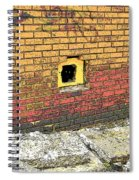 Cat In A Hole In A Wall Spiral Notebook