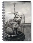 Cat In Cage Spiral Notebook