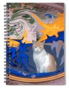 Cat In Doorway Fantasy Spiral Notebook