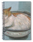 Cat In Casserole  Spiral Notebook