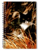 Cat In The Golden Grass Spiral Notebook