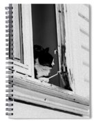 Cat In The Window Spiral Notebook
