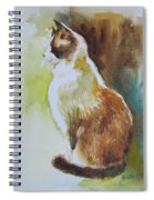 White And Brown Cat Spiral Notebook