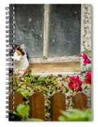 Cat On A Sill Spiral Notebook
