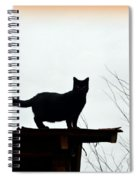 Cat On A Tin Roof 2 Spiral Notebook