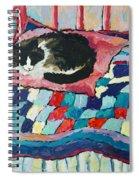 Cat On Pink  Spiral Notebook