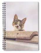 Cat On The Hot Tin Roof Spiral Notebook
