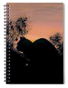Cat - Orange - Silhouette Spiral Notebook